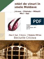 Degustări de Vinuri În Cramele din Rep Moldova