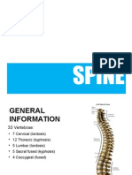 SPINE (Edited 19Nov2011)