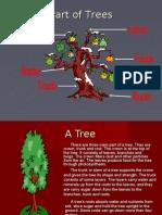 Materi Bahasa Inggris SMP Part of Trees