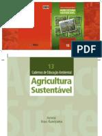 13-agricultura-sustentavel-2012.pdf