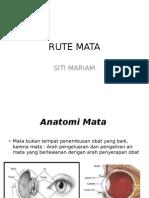 Rute Mata