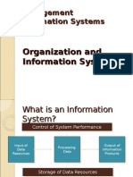 Organization and Information System