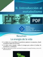 T 08 Introducción al metabolismo 2.pdf
