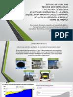 ESTUDIO DE VIABILIDAD GNL.pdf