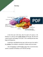 Normal Anatomy & Physiology &Psychopathology