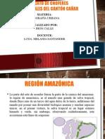 region amazonia.pptx