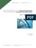 Standard Conceptual Report