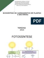 Seminário de Bioquímica (1)