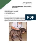 149 Ivermectina en Pequenos Animales - Dermatologia y Aplicaciones Adicionales Espanol 58fd3034eb