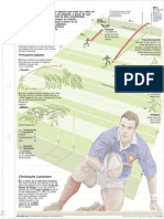 Rugby deporte, Rugby deporte