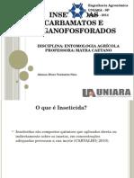 2. Apresentação Organofosforados e Carbamatos
