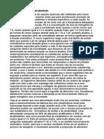 SEMENTE GERMINADA.pdf