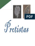 6 Protistas