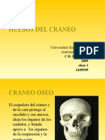 Anatomia Aplicada Clase 1