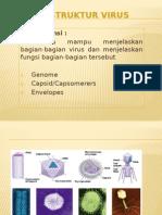3. Struktur Virus br.pptx