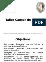 Taller CA de Colon_2012