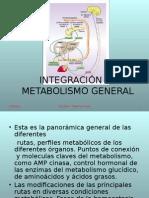 Integración Al Metabolismo General