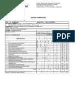 Matriz Eletrônica Subsequente.pdf