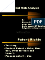 Patent Risk Analysis