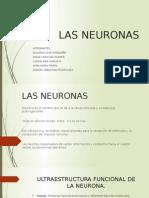 LAS-NEURONAS (1).pptx
