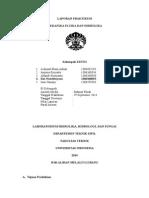 Laporan Praktikum Mekanika Fluida H-06 Kelompok 28