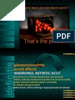 Sindromul Nefritic Acut