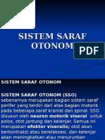 Sistem Saraf Otonom