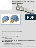 3-developpement_craniofacial