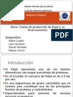 Costos de Producción y Financiamiento