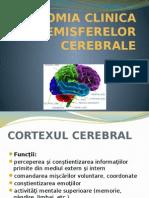 Anatomia Clinica a Emisferelor Cerebrale