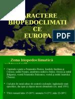 5. Padurile_mediteraneene - Copy