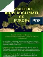 6. Asociatii Arbustive Mediteraneene