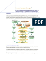 Lectura Complementaria 1.El Proceso de Formulacion Estrategica (2