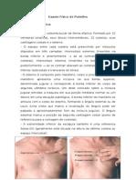 Exame Físico de Pulmões