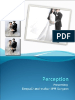 Perception 26