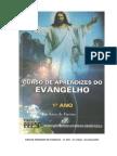 Curso de Aprendizes Do Evangelho - Primeiro Ano - 21 Edição (FEESP)