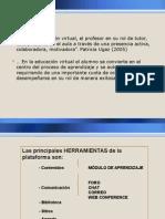 Educacion Virtual - Roles y Principales Carcteristicas