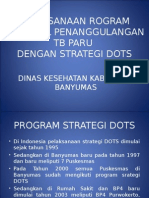 Program Strategi Dots