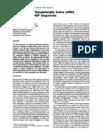 Stabilization of Translationally Active MRNA by Prokaryotic REP