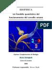 [Psicologia] Biofisica quantistica nel cervello umano