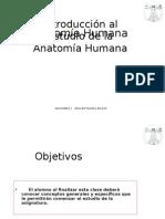 Clase 1 Generalidades Anatomicas