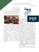 Introdução ao estudo sociológico das organizações.doc