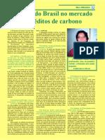 Chances Do Brasil No Mercado de Créditos de Carbono
