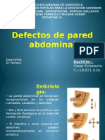 Defecto de Pared