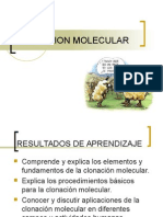Clonacion Molecular