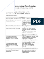 Informe Evaluación Práctica Profesional Pedagógica
