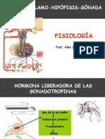 Tema 7 GnRH-gonadotropinas.pptx
