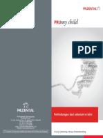 Brochure PMC