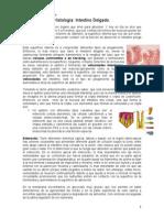 M 2.6..pdf