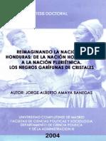 Reimaginando La Nacion en Honduras de La Nacion Homogenea a La Nacion Plurietnica Los Negros Garifunas de Cristales Trujillo